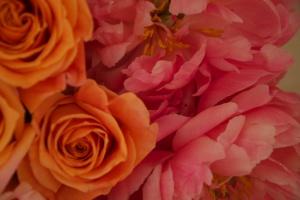 full of flowers - Version 2