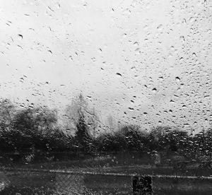 windshield rain
