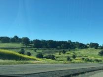 driving on line ridge