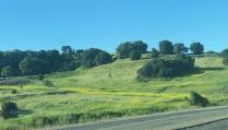 Hills behind lot 1